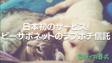 ペットの相続問題を解決する日本初のサービス!ピーサポネットのラブポチ信託®