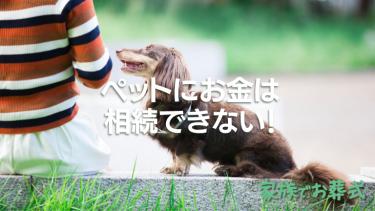 ペットにお金は相続できない!自分の死後もペットが安心して生活するために飼い主がすべきこと